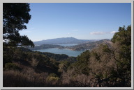 Looking back across the cove to Tiburon 2.jpg