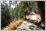 North Kaibab Trail Hike - Very green compared to the rocky South Kaibab Trail 1.jpg