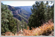 North Kaibab Trail Hike - Very green compared to the Rocky South Kaibab Trail 3.jpg