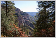 North Kaibab Trail Hike - Very green compared to the Rocky South Kaibab Trail 5.jpg
