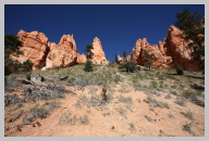 Bryce Canyon - Queens Garden Trail Hike07.JPG