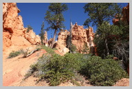 Bryce Canyon - Queens Garden Trail Hike08.JPG